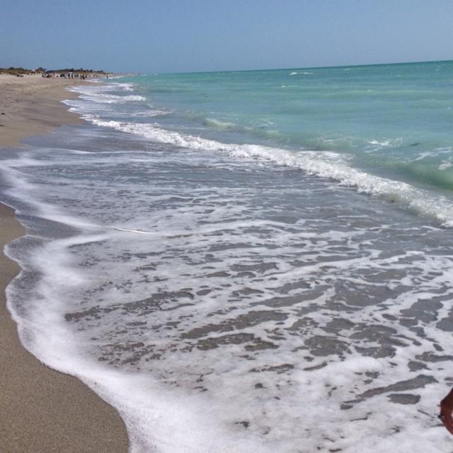 Island Beach Scenes: 29 Best Images About Florida Beach Scenes On Pinterest