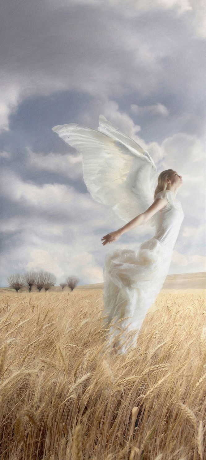 angel flying up to heaven - photo #10