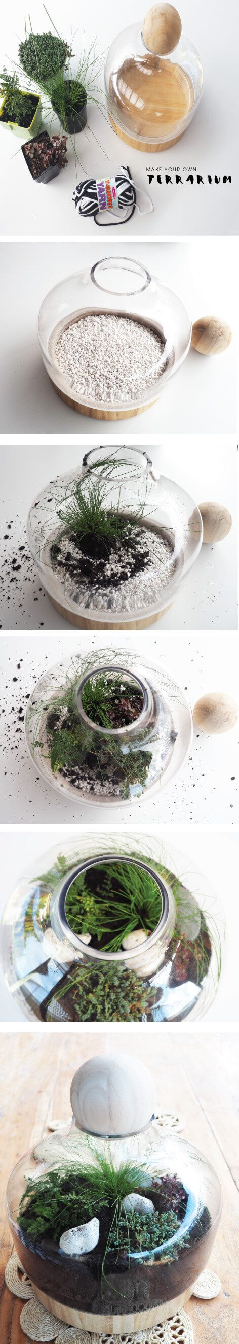 How to make your own terrarium and the plants I used. Super easy to make, takes 20 mins tops. Check out this blog for the details.