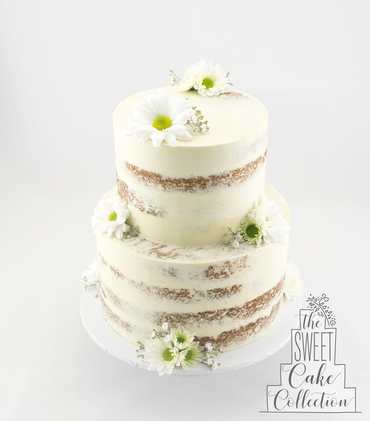 Semi naked Cake with Daisies and Baby's Breath