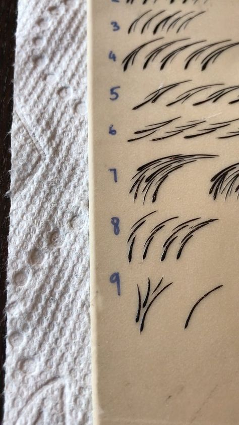 Practice patterns that you can use for the whole brows later.
