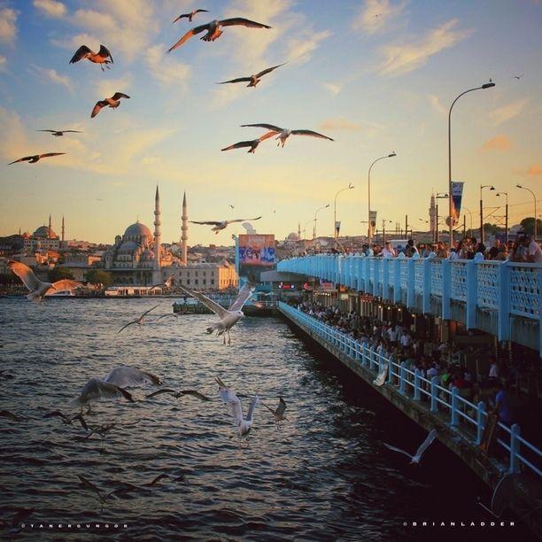 Galata Bridge, Istanbul, Turkey — by Taner Güngör. It's one of the best in Istanbul