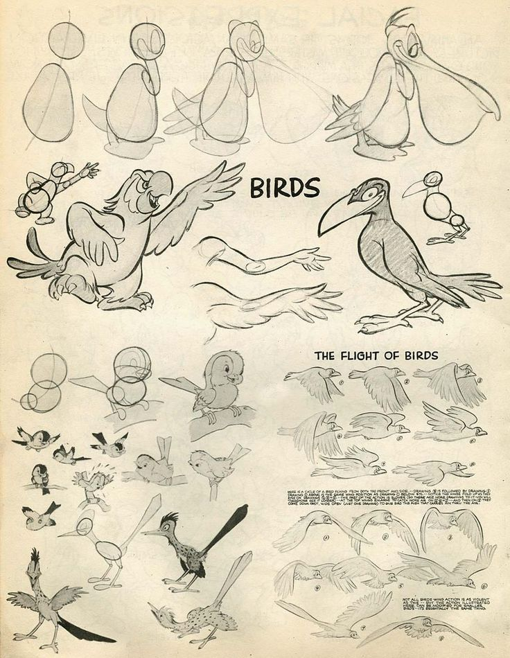 Character Design Challenge Of The Month : Best preston blair animation images on pinterest