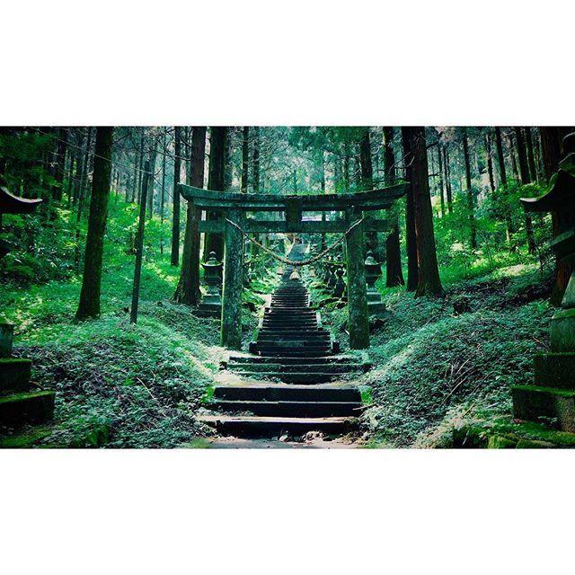 【haluca_084】さんのInstagramをピンしています。 《. 早起きして 錦織の試合を気にしつつ 上色見熊野座神社へ . 本殿までの長い階段には 100基もの灯篭が並んでいて とても神秘的 . 夏目友人帳の映画の舞台になった 地でもあるみたいです . #熊本 #阿蘇 #上色見熊野座神社 #神社 #山 #自然 #森 #景色 #夏目友人帳 #forest #kumamoto #aso #shrine》