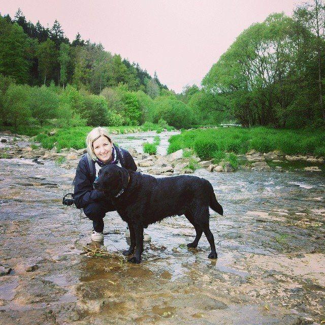 #river #sluice #labrador