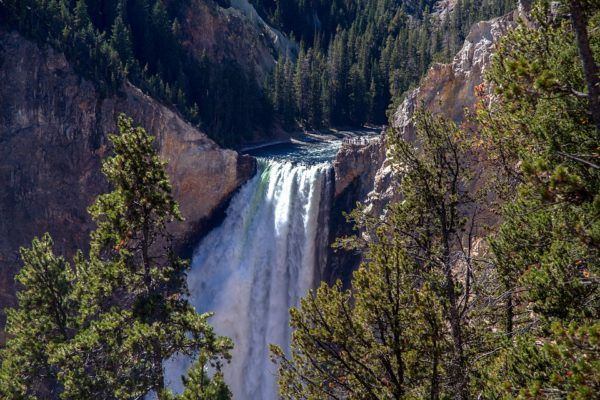 Top Five reasons to Visit Yellowstone Now | West Adventures
