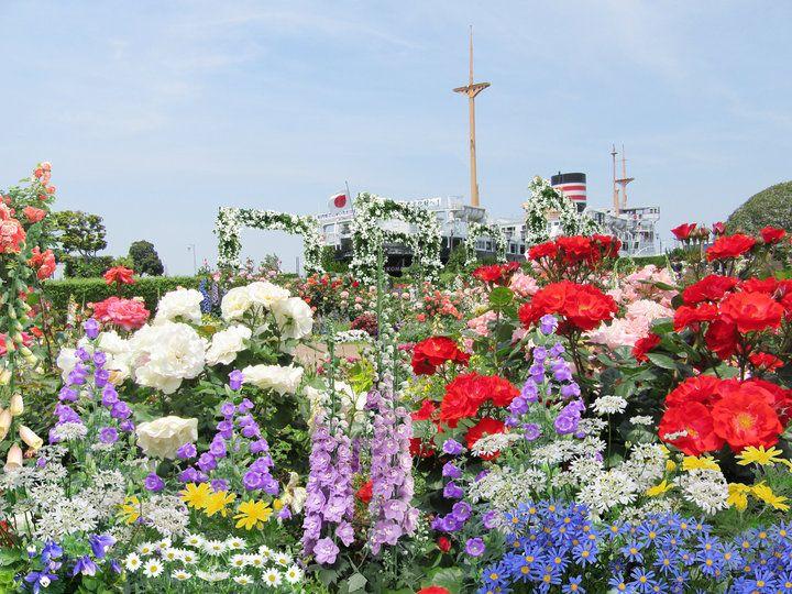 みなとみらいや中華街など、数々の観光スポットがある横浜で、この春、期間限定のイベント「ガーデンネックレス横浜2017(第33回全国都市緑化よこはまフェア)」が開催されます。  開催期間は3月25日(土)から6月4日(日)まで。 豊かな自然が広がる里山はもちろん、異国情緒漂う港の街並みが花と緑に包まれる、一味違う横浜におでかけしませんか?