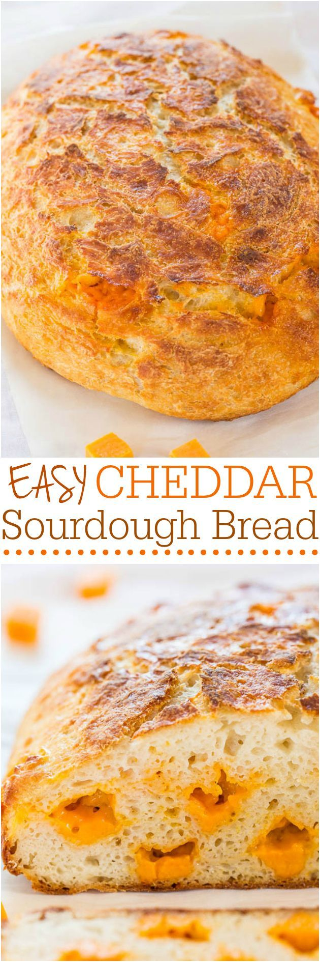 Easy Cheddar Sourdough - No starter required and so easy! It tastes like it's from a fancy bakery! Who can resist homemade cheesy bread!! /averie/