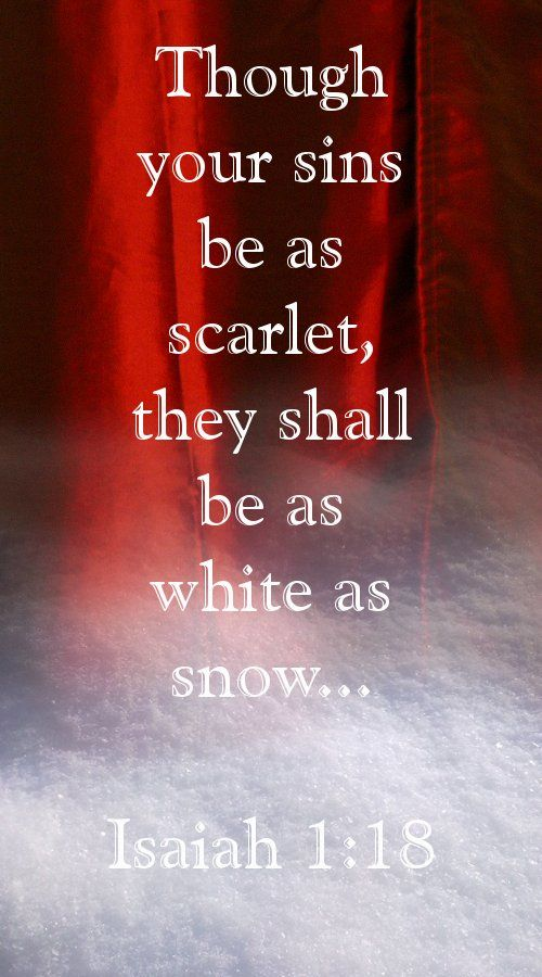 """Come now, let us reason together, says the Lord: though your sins are like scarlet, they shall be as white as snow; though they are red like crimson, they shall become like wool. Isaiah 1:18"