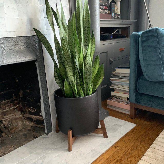 Grand Planteur Moderne Du Milieu Du Siecle Pot De Plante Et Stand