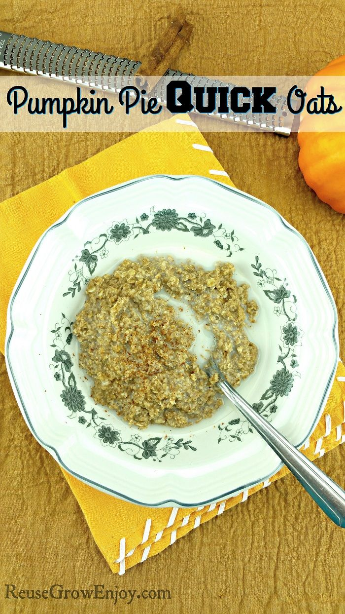 Sick of the same old boring oatmeal? Well, how about a nice bowl of pumpkin pie oats? Don't worry it does not take forever to make and you do not have to worry about dirtying up a bunch of dishes either.