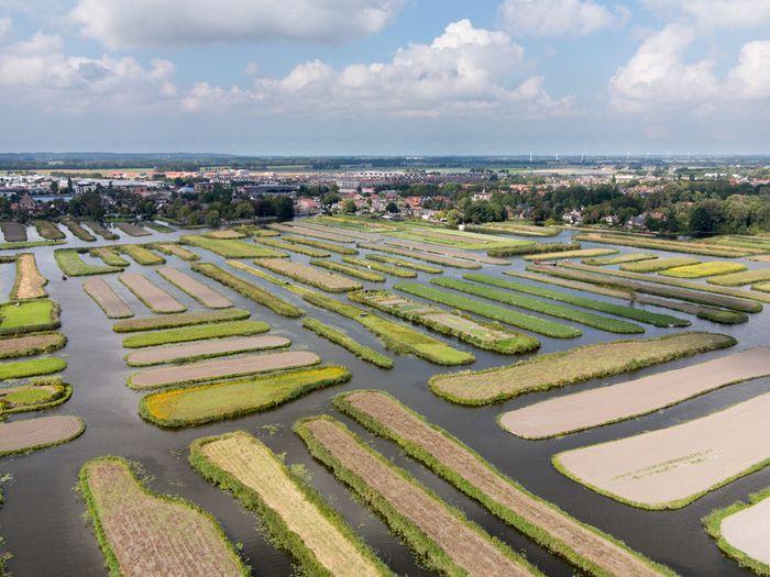 Museum #BroekerVeiling bevindt zich in het prachtige Rijk der Duizend Eilanden. Maar kennis met het gebied op de #zaaimiddag die op 2 maart plaatsvindt. (www.broekerveiling.nl) #langedijk