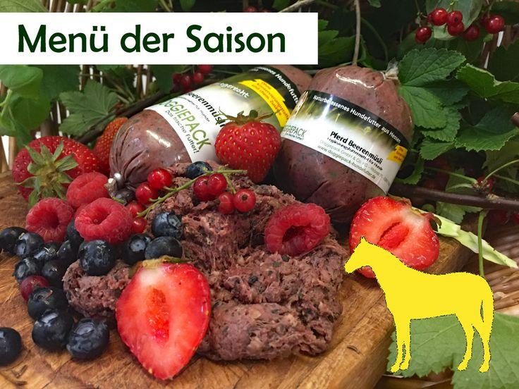 Hundefutter mit hohem Fleischanteil: Pferd mit Beerenmüsli  Frisches Pferdefleisch aus der Region Mittelhessen kombiniert mit köstlichen Waldbeeren und Baslikumsorgt für sommerliche...