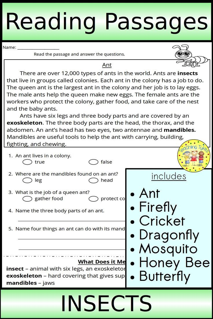 7 Reading Passages Each Page Includes An Insect Non Fiction Reading Selection A W Reading Passages Text Based Questions High Interest Reading Passages [ 1104 x 736 Pixel ]