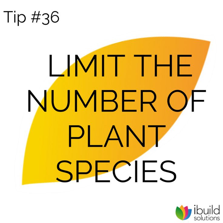 Minimizing the number of plant species in your garden will make your garden appear easier to maintain and give it a more uniform look. However, don't be too dogmatic about restricting your choices.