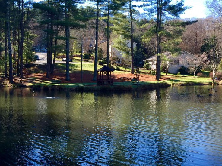 55 best call 704 816 0526 lake management charlotte nc for Farm pond maintenance