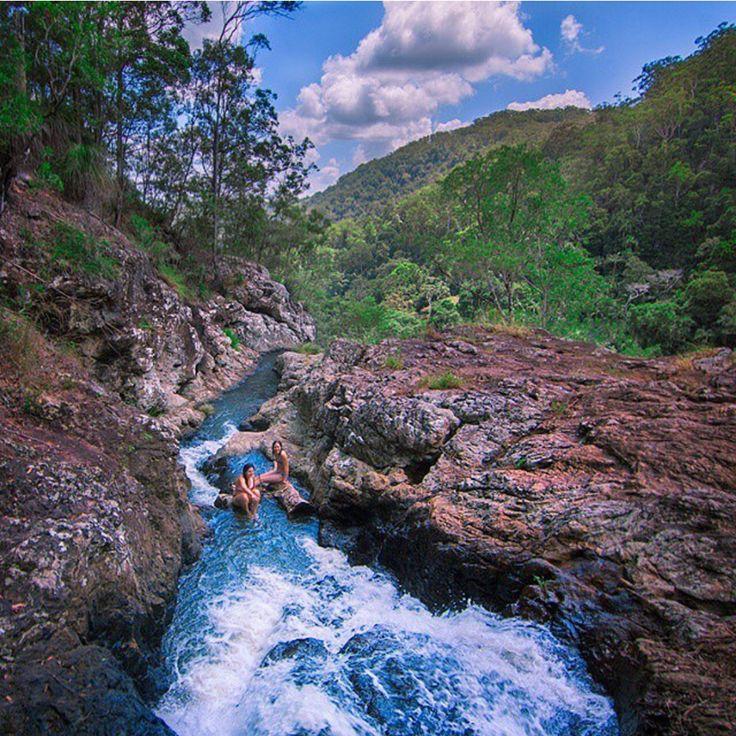 Kondalilla National Park, Sunshine Coast, Queensland
