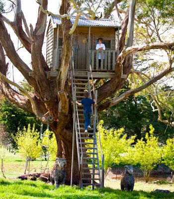 For the garden, and your children. A tree house to dream for.