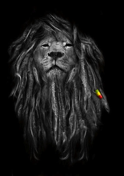 Rasta Lion good idea for a Leo tat                                                                                                                                                      Mais