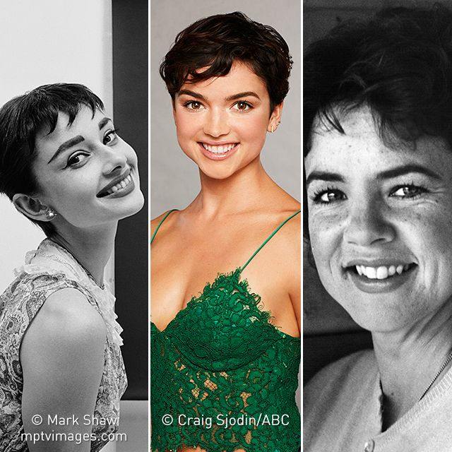 "Have you been watching the Arie Luyendyk Jr. season of The Bachelor? People are comparing Bekah Martinez (center) to ""Rizzo"" from Grease (Stockard Channing, right) and Audrey Hepburn (left). Do you see a resemblance? Bekah's also the first contestant with #ShortHair, after 22 long seasons. Photo of Audrey by #MarkShaw. Photo of Bekah by Craig Sjodin/ABC. #thebachelor #bachelor #AudreyHepburn #Audrey #audreyhepburnstyle #rizzo #grease #abc #realitytv #realityshow #mptvimages"