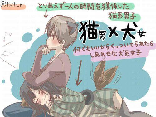 《貓犬系情侶》難道這就是可愛情侶行為的終極版?♥♥♥