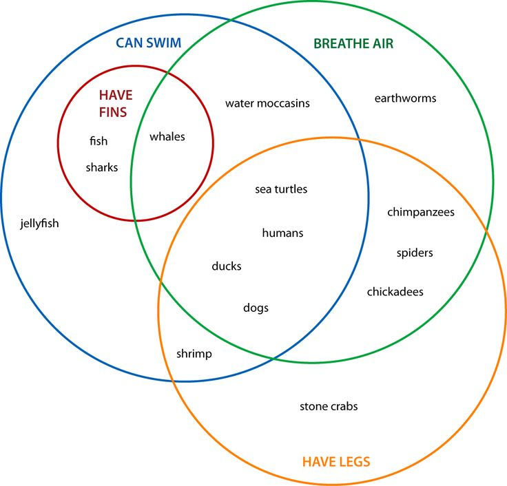 Images of blank euler diagram spacehero 1000 ideas about venn diagrams on pinterest graphic ccuart Choice Image