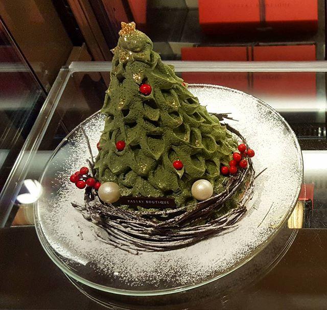 *신라호텔의 트리케익* ° ° ° ° 몇일전에 다녀온 신라호텔 빵투어 인데요 산건 아닌데,넘넘 이뻐서 찰칵~했다며^^ 신라호텔 크리스마스 시즌 시그니처 케익 인데요 매년 똑같이 딸기 쉬폰 케익일것 같고요  벌써 크리스마스 인듯!이쁘네요😍😍 역시 아이디어가 좋아야 이쁜 제품이  나온다는거ㅎㅎ고퀄리티 케이크들이 많으니 한번쯤 가보셔도 좋을것 같아요😊 ° ° ° ° #먹스타그램 #맛스타그램 #빵스타그램  #인스타푸드 #베이킹그램 #신라호텔 #디저트그램 #디저트 #패스트리부티크 #달다구리 #트리케이크 #트리케익 #호텔빵투어 #서울맛집 #크리스마스 #당충전 #식빵 #빵순이 #제과제빵 #베이킹 #데일리 #빵 #소통 ° ° #bakery #bread #baking #treecake