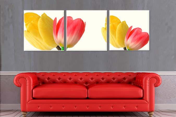 Lalele galbene si rosii 2209