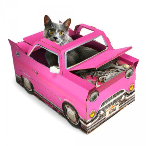 Maison pour Chat Cadillac Rose chat pète