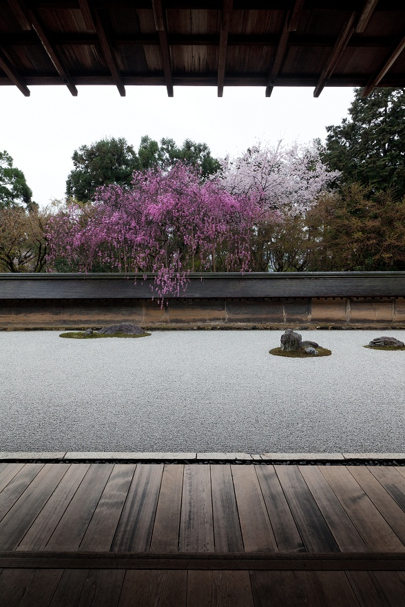 Ryōan-ji, Kyoto, Japan - Best enjoyed when crowds are fewer -- you'l never get a shot like this normally without having a dozen tourists sitting in front of you at the edge of the garden