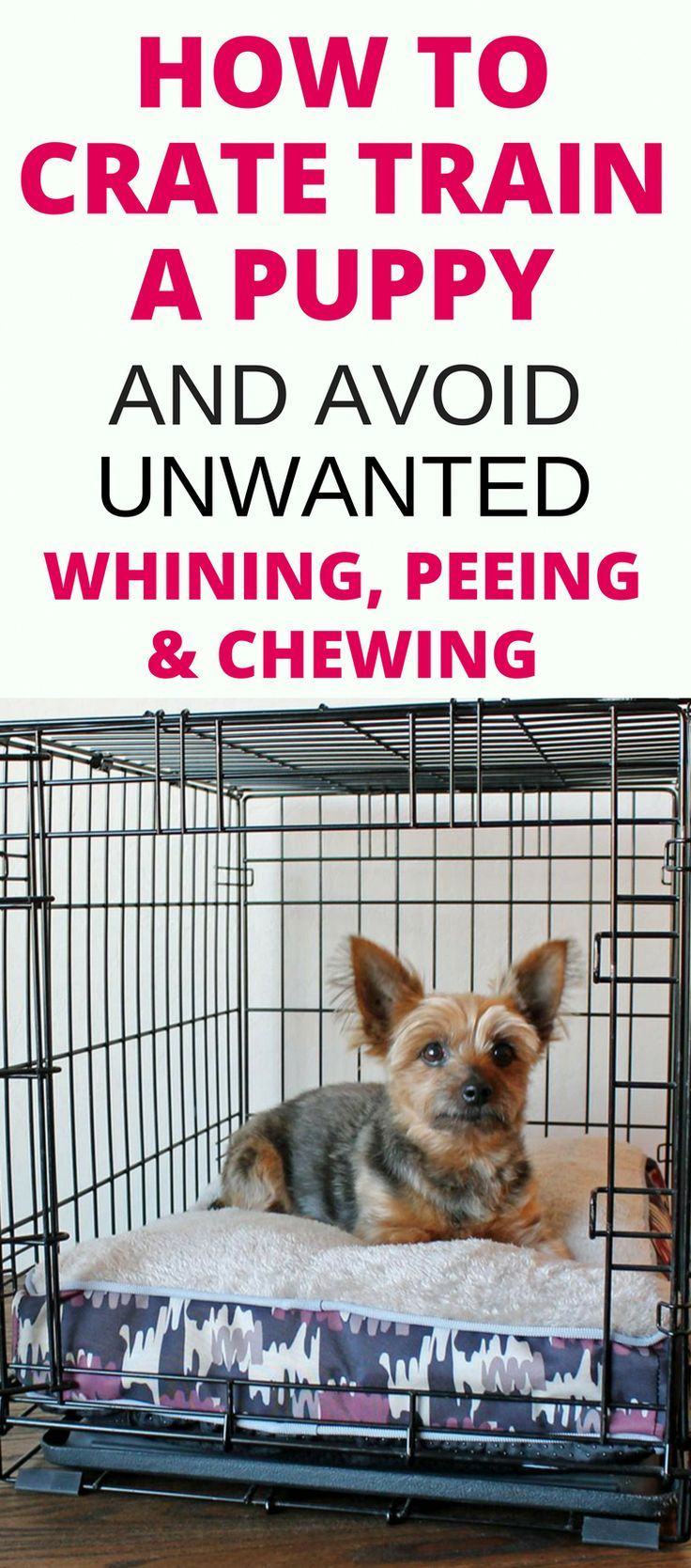 Crate training a puppy whining peeing chewing solved