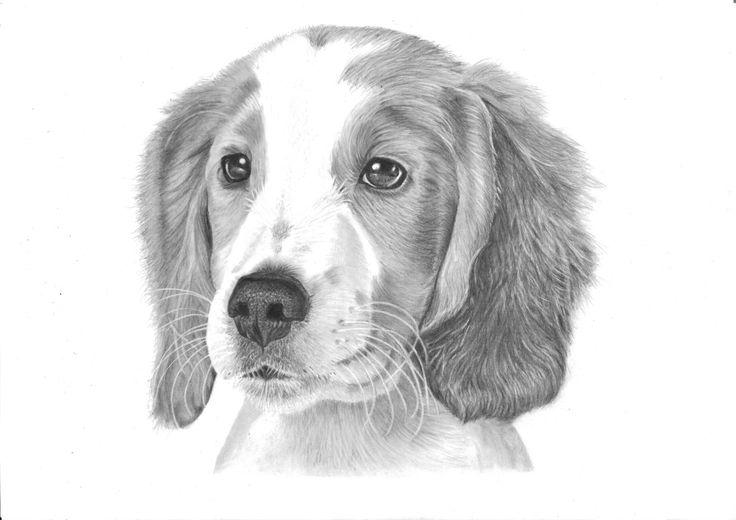 Custom A4 Portrait Pets People Family Portrait by PencilPassion