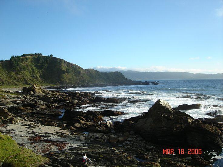 Zona costera de Valdivia.