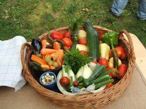 Nyári zöldségkosár