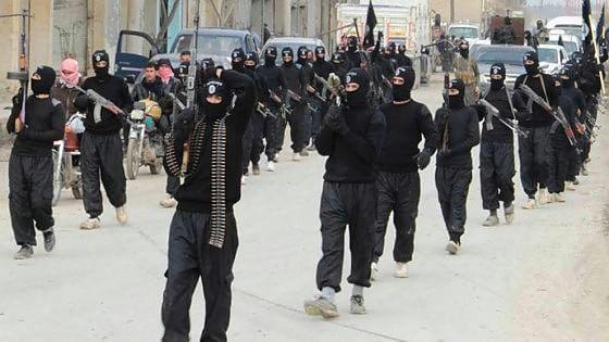 Terrorismo, l'alleato più grande è la polizia 🚨 internazionale