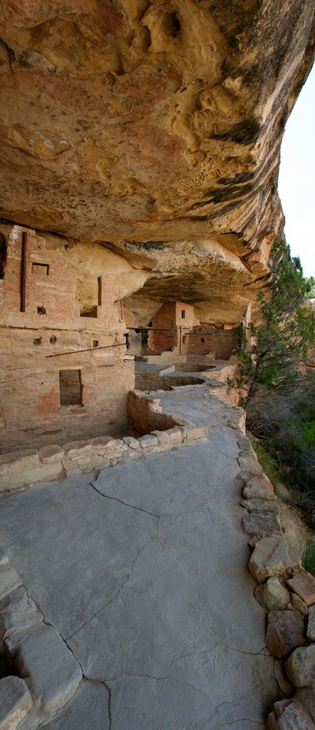 Archeological Site ~ Mesa Verde, Colorado