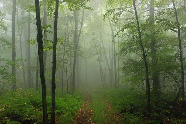 10 Fascinating Spots In Pennsylvania That Are Straight Out Of A Fairy Tale