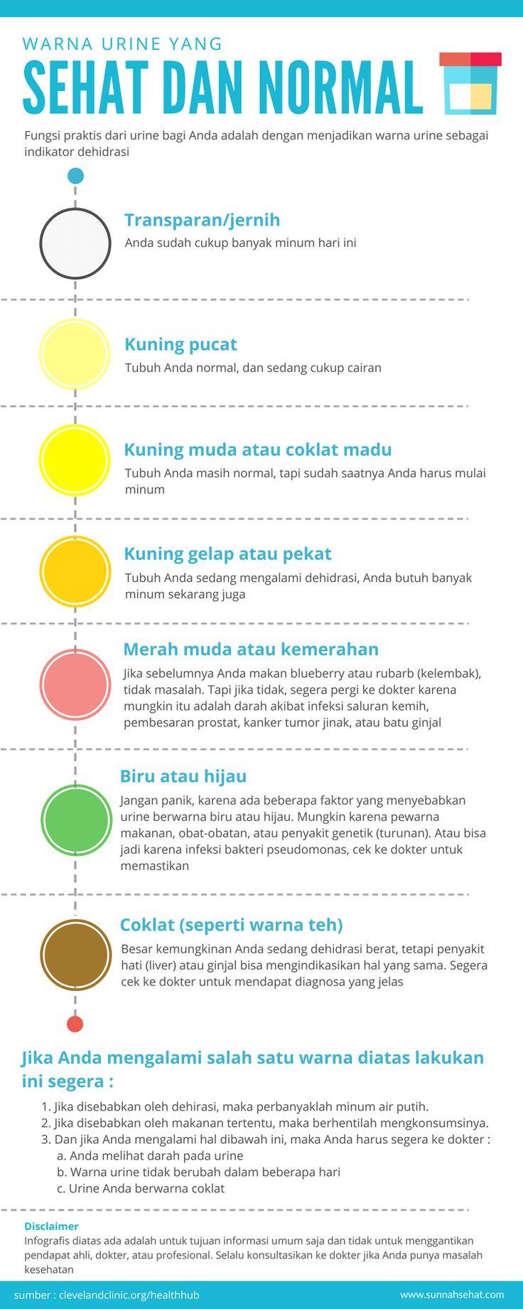 [Infografis] – Ini Dia, Warna Urine yang Sehat dan Normal