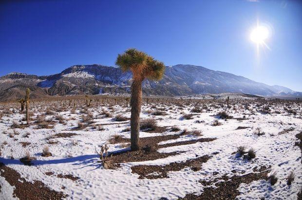 De 20 mooiste Amerikaanse nationale parken in de winter