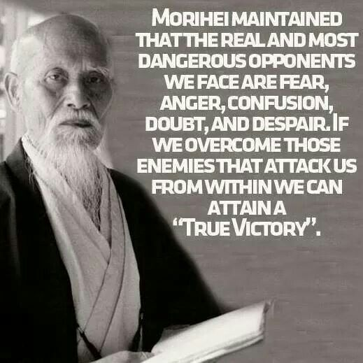 The Real & Most Dangerous Opponents we face are Fear, Anger, Confusion, Doubt & Despair. If we Overcome those Enemies that Attack us from Within we can Attain a True Victory ...... Masakatsu agatsu
