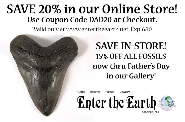 10 best coupon codes images on pinterest coupon codes ammonite use coupon code dad20 at checkout valid fandeluxe Gallery