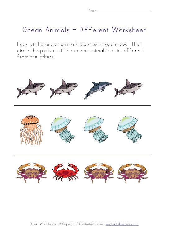 17 Best images about Ocean Themed Worksheets on Pinterest ...
