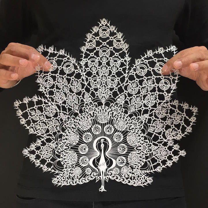 Papercut Designs Reflect Beauty of the Natural World | http://yourartitude.com/en/design/papercut-designs-reflect-beauty-of-the-natural-world