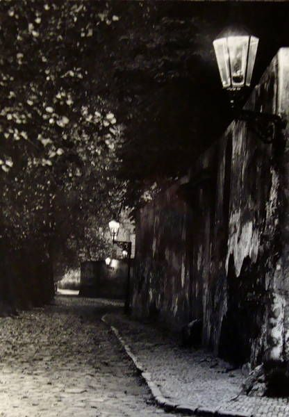 Untitled, ( Street eclairée planted with trees lamps ), Josef Sudek.