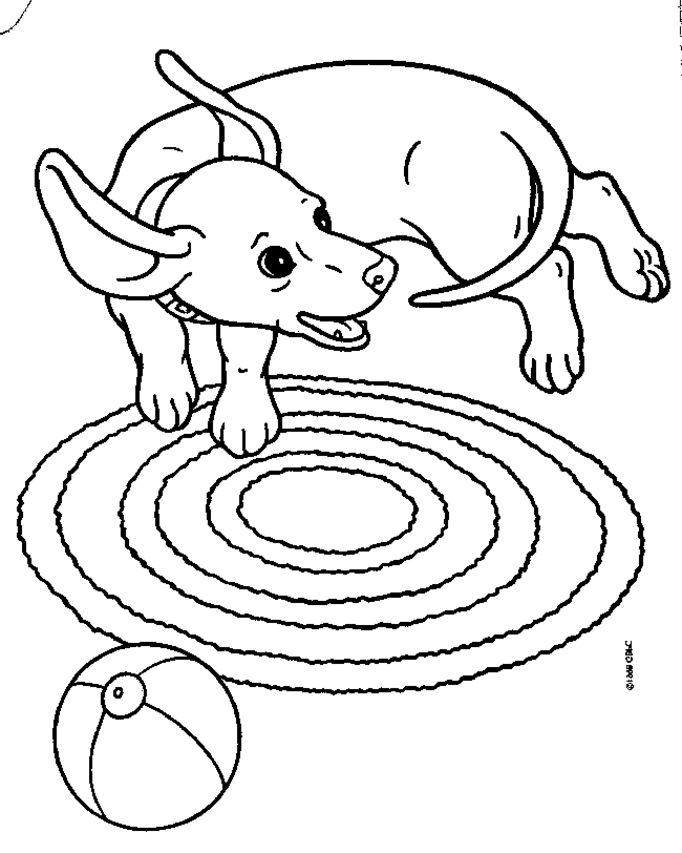 lps coloring pages dachshund puppies - photo#50