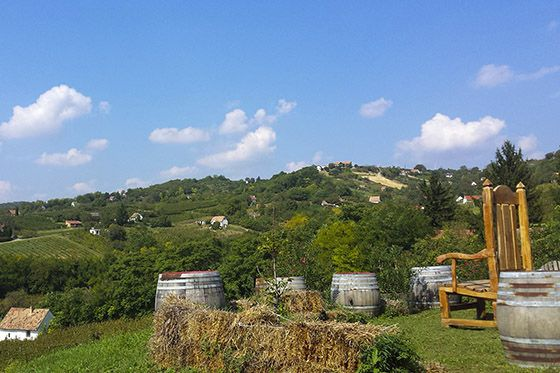 A trilogy of wineries and wines III. - Discovering Szekszárd's strengths - Németh János Winery