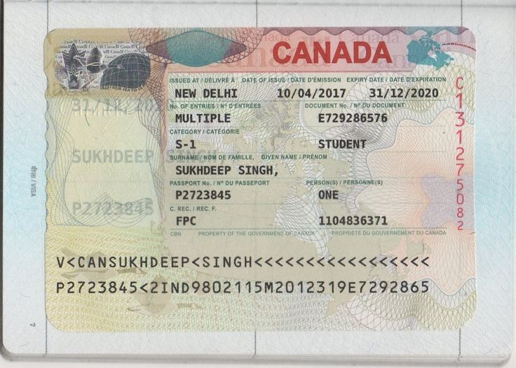 Pin van Arx Education op Student Visa