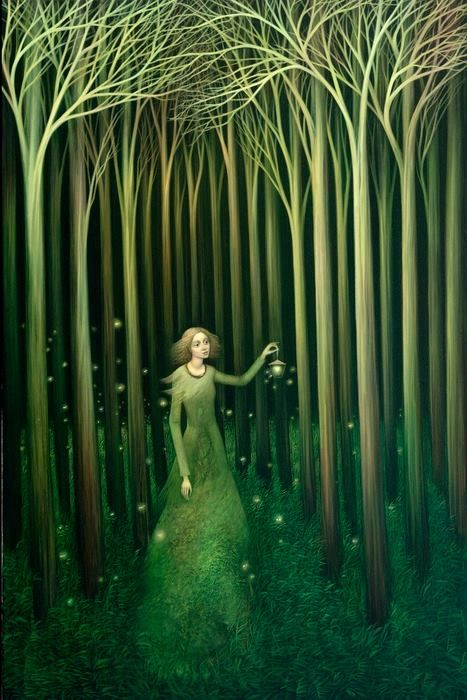 25 Best Ideas About Chasing Fireflies On Pinterest