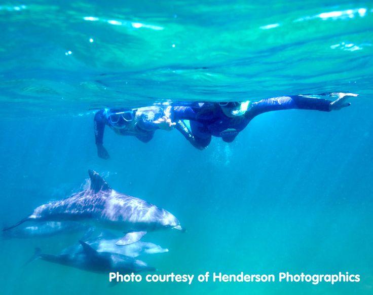 Bunbury Dolphin Discovery Centre