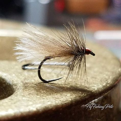 CDC caddis with turkey biot body and dark grey dun hackle from a Hebert Miner cape from @flyfishfood Tied on a size 16 @moonlitflyfishing dry fly hook. #flyfishing #flytying #flytyingaddict #flytyingjunkie #flugbindning #fluebinding #torrfluga #troutfishing #troutcandy #dryfly #dryordie #caddisfly #caddis #tyingflies #atthevise #moonlitflyfishing